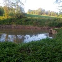 rybník I